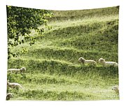 Auckland Sheep Grazing Tapestry