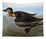 Audubon: Duck, 1827 Tapestry