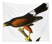 Audubon: Hawk, 1827 Tapestry