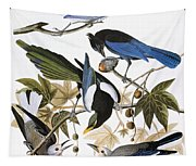 Audubon: Jay And Magpie Tapestry