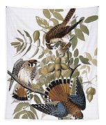 Audubon: Kestrel, 1827 Tapestry