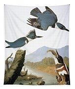 Audubon Kingfisher Tapestry
