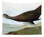 Audubon: Limpkin Tapestry