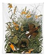 Audubon: Meadowlark Tapestry