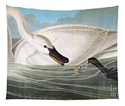 Audubon: Trumpeter Swan Tapestry