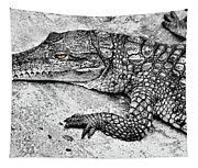Australian Shy Crocodile  Tapestry