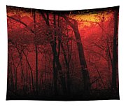 Autumn 2015 Panorama In The Woods Pa 06 Tapestry