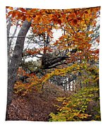 Autumn At Beech Forest Tapestry