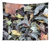 Autumn Carpet Tapestry