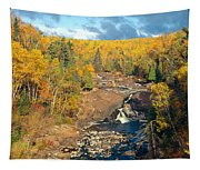 Autumn Color Along Beaver River Tapestry