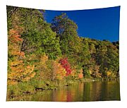 Autumn Color Trees Along Beauty Lake Tapestry