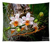 Autumn Colored Orchids Tapestry