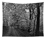 Autumn Drive Bnw Tapestry