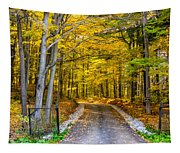 Autumn Entrance 5 Tapestry