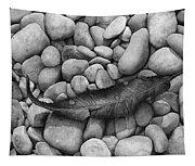Autumn Epilogue On Black Tapestry