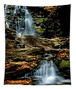 Autumn Falls - 2885 Tapestry