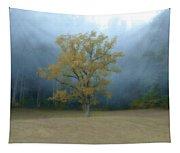 Autumn Fog In Cades Cove Tapestry