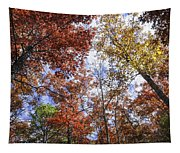 Autumn Forest Canopy Tapestry