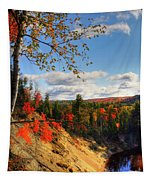 Autumn In Arrowhead Provincial Park Tapestry
