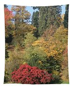 Autumn In Baden Baden Tapestry by Travel Pics