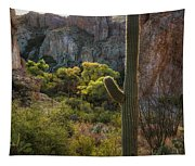 Autumn In The Sonoran  Tapestry