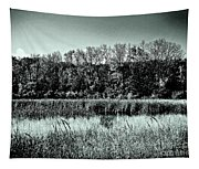 Autumn In The Wetlands - Black And White Tapestry