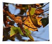 Autumn Leaves Macro 1 Tapestry