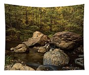 Autumn On The Creek  Tapestry