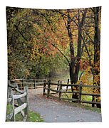 Autumn Path In Park In Maryland Tapestry