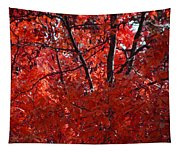 Autumn Red Trees 2015 Tapestry