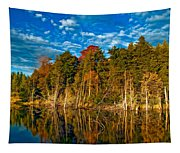 Autumn Reflection II Tapestry