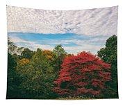Autumn Skies Tapestry