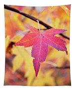 Autumn Still Tapestry