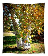 Autumn Sycamore Tree Tapestry