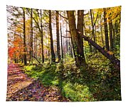 Autumn Trail Tapestry