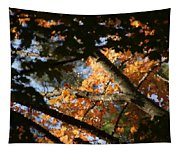 Autumn Trees 2015 Pa 01 Tapestry
