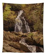 Autumn Waterfall In The Great Smoky Mountains Tapestry