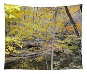 Autumn Woods 2 Tapestry