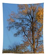 Autumn's Gold  - No 2 Tapestry