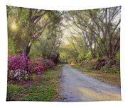 Azalea Lane By H H Photography Of Florida Tapestry