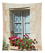 Azay Le Rideau Bridge, Window, Lace Tapestry