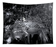 Baby Alligators On Board Tapestry