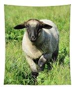 Baby Ewe Tapestry