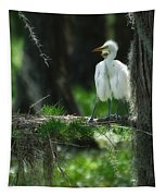 Baby Great Egrets With Nest Tapestry