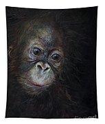 Baby Orangutan Three Tapestry