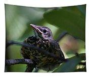 Baby Robin Tapestry