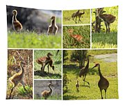 Baby Sandhills Collage Tapestry