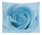 Baby Soft - Blue Tapestry