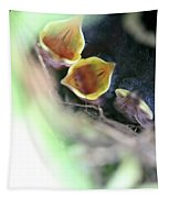 Baby Wrens In The Flowers 338 Tapestry
