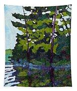 Backlit Pines Tapestry